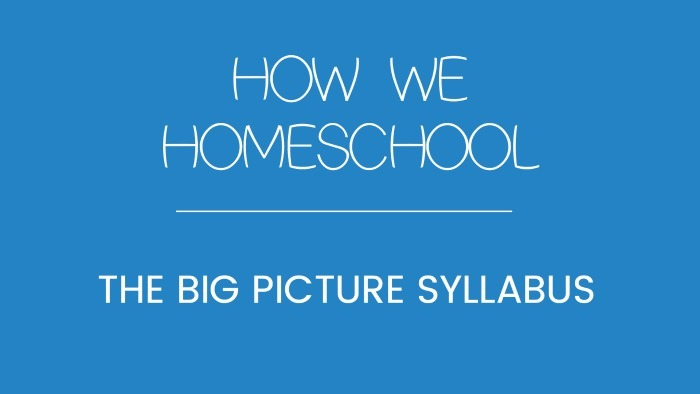 big picture syllabus