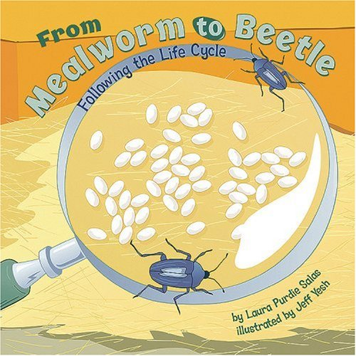 From Mealworm to Beetle: Following the Life Cycle (Amazing Science: Life Cycles)